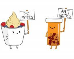 Προβιοτικά, αντιβιοτικά, διάρροια: Πώς σχετίζονται;